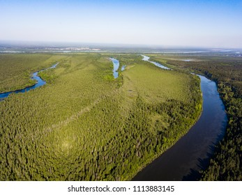 Taiga forest and river from aerial view. Siberia, Russia