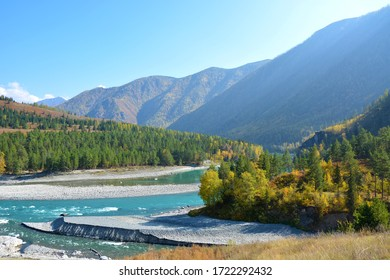 Taiga river. River among the mountains. River flowing among the taiga. Forest. Altai.