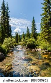 "Taiga. Siberia. Ergaki. Mountain stream flowing from the lake ""Svetloe."" - Shutterstock ID 1887680965"