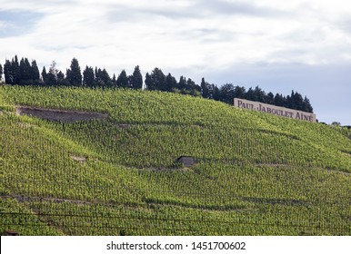 Tain l'Hermitage, France - June 28, 2017: View of the M. Chapoutier Crozes-Hermitage vineyards in Tain l'Hermitage, Rhone valley, France