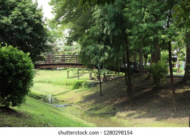 Tainan City,Taiwan - July 5th,2018:Barclay Memorial Park , named in memory of Rev. Dr. Thomas Barclay, as well as being a favorite of Tainan's residents, was also voted one of 10 best parks in Taiwan.