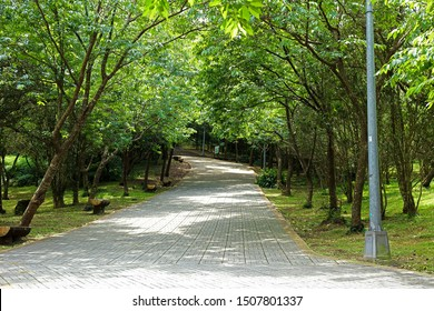 Taipei City,Taiwan -  pathway in the forest at  Yangmingshan National Park