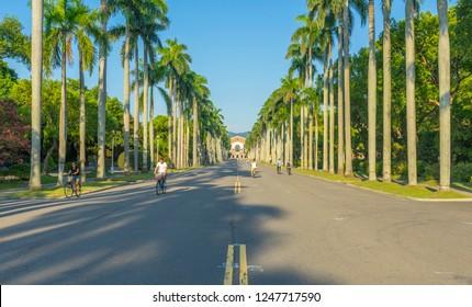 Taipei, Taiwan - Aug 8, 2018 : Palm tree leading to National Taiwan University at twilight time in Taipei, Taiwan on August 8, 2018.