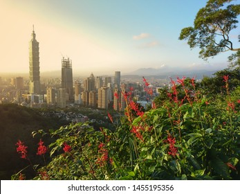 Taipei, Taiwan - October 23, 2016 : View of Taipei 101 from Xiangshan Hiking Trail or Elephant Mountain Trail and Jiuwufeng Hiking Trail is a natural trail near downtown Taipei.