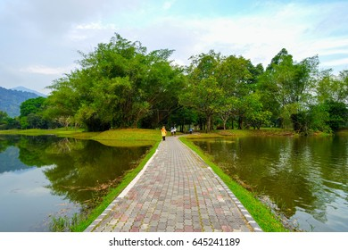 Taiping lake located in Malaysia and became a place of leisure and tourist attractions of the country. Shaped the landscape perspective.