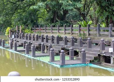 Taiping Lake in Perak, Malaysia. One of Perak and Malaysia main attraction. The first lake garden in Malaysia. Reflection in water.