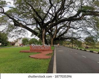 Taiping, Malaysia : December 17,2020 - View during Pandemic at The Raintree Walk near Taman Tasik Taiping, Taiping, Malaysia. Lots Of People Keep Staying at Home To Avoid Covid-19 Spreading