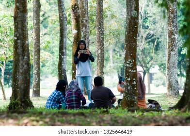 Taiping, Perak , Malaysia - March 26, 2016: Group of People picnicking under a big tree at Taiping Lake Park.