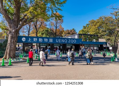 TAITO, TOKYO / JAPAN - NOVEMBER 15 2018 : Scenery of the entrance of Ueno Zoo. There is a ticket office. It is a popular zoo where many people visit.