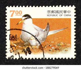 TAIWAN - CIRCA 1984: Orange color postage stamp printed in Taiwan with image of a Sooty Tern seabird with its chick.