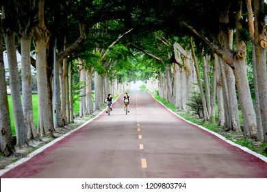 TAIWAN, TAITUNG, MAY 2014 - A pair of unidentified girls riding bicycle along a beautiful stretch of road lined with trees. This is the famous tourist and local destination.