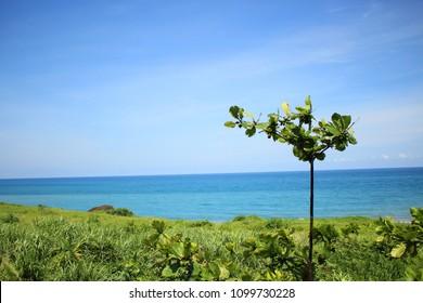 Taiwanese turquoise sea coast