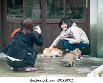 Taiwan-Feb2015: The Houtong Cat Village or Houdong Cat Village is a village in Ruifang District, New Taipei, Taiwan famous for its cat population.Visitors come to see the cats living in the town.