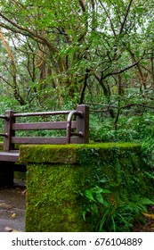 Taiwan's northern mountain attractions, Yangming Mountain Erzi Ping