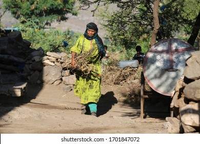 Taiz  Yemen - 16 Mar 2017 :A woman from the countryside of the Yemeni city of Taiz collects firewood for use in setting fire and using it as a substitute for domestic gas in the kitchen.