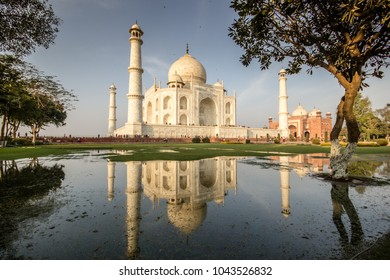 The Taj Mahal in Agra, India, reflecting in a pool of water