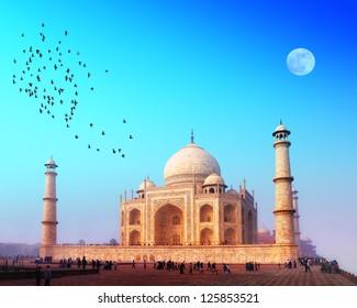 Taj Mahal India, Agra. 7 world wonders. Beautiful Tajmahal travel destination