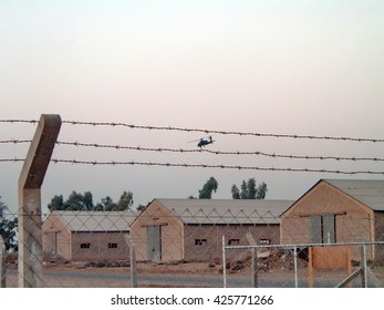 TAJI, IRAQ - CIRCA 2005: US Army helicopter flying above abandoned buildings at the end of a Forward Operating Base, framed by two strands of barbed wire