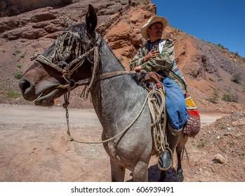 TAJIKISTAN / KULYAB - May 21, 2012 / Tajik shepherd on horseback.