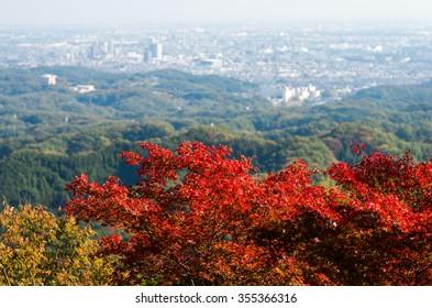 Takao mountain,tokyo,japan autumn