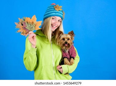 Take care pet autumn. Veterinary medicine concept. Health care for dog pet. Pet health tips for autumn. regular flea treatment. Girl hug cute dog and hold fallen leaves. Woman carry yorkshire terrier.