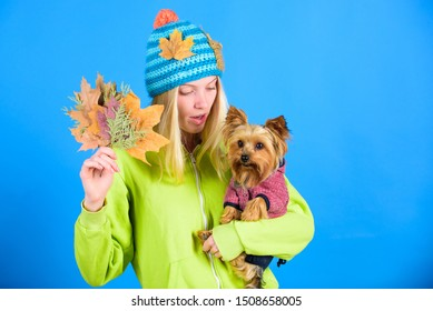 Take care pet autumn. Veterinary medicine concept. Health care for dog pet. regular flea treatment. Pet health tips for autumn. Girl hug cute dog and hold fallen leaves. Woman carry yorkshire terrier.