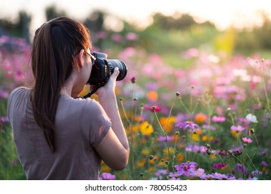 Take pictures of flowers and sunrise in the morning. Sunlight in the morning very beautiful and refreshing.