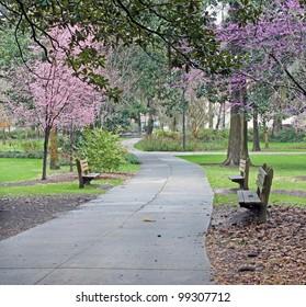 Take a stroll through a beautiful Southern park
