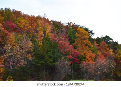 Taken along the Cherohala Skyway in Tennessee during the fall.