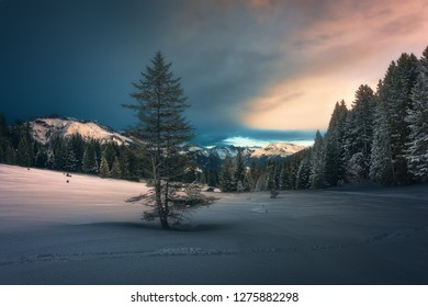 Taken on a cold winter evening at sunset in the area of Praettigau, near the village of Pany in the canton of Graubünden in Switzerland.