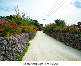 Taketomi rural tropical island, Taketomi island, Okinawa, Japan - Shutterstock ID 576433543