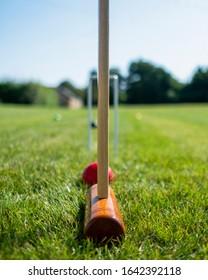 Taking aim during croquet match