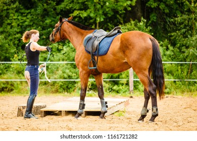 Taking care of animals, horsemanship, equine concept. Jockey young woman getting horse ready for ride on countryside.