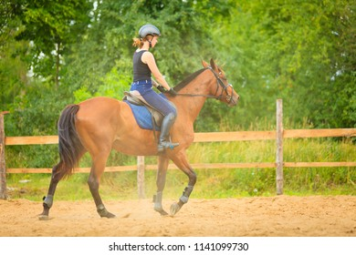 Taking care of animals, horsemanship, western competitions concept. Jockey girl doing horse riding on countryside meadow, sunny day outside