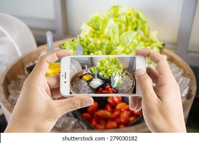 Taking photo of salad bar with vegetables in the restaurant