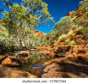 Taking a walk inside famous Kings Canyon, Australia. The stream holds lots of water after heavy rains.