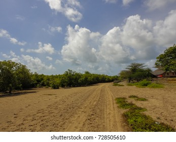 Takwa ancient city territory. Abandoned town. Indian Ocean coast near Lamu in Kenya. Africa