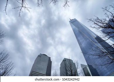 Tall buildign of One world trade center in New York city through tree branches  on ground zero on cloudy winter day, up view, copy space. Manhattan, New York.
