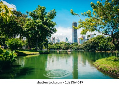 Tall building situated on a lake Rich in trees On a clear day At Lumpini Park, Bangkok, Thailand