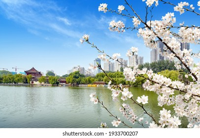 Tall buildings and ancient buildings by the lake, city view of Xi'an, China