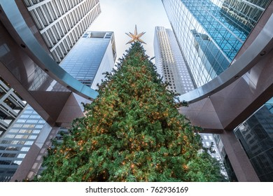 Tall Decorated Christmas Tree Overshadowed by Tall Downtown Skyscrapers, Houston, Texas - Businesses celebrate holidays concept