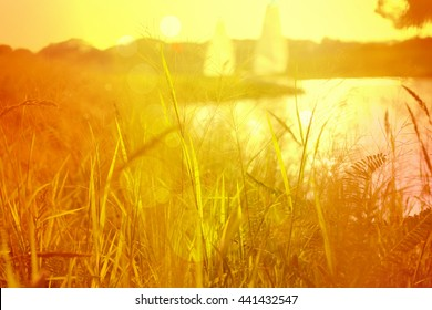 Tall grass on Grass on the lake shore with sunset and sailboat on the background. With light burst, vintage nostalgia filter effect