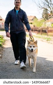 Tall man is walking orange akita dog on the yellow leash on the street. The back is blurred and the man is stepping at the same time as the japanese orange akita dog why looks friendly and obedient.