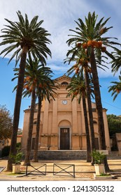 Tall palm trees in front of Eglise de la Misericorde in the center of L'Île-Rousse, Corsica, France