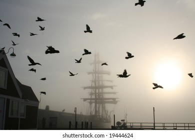 Tall Ship with Birds