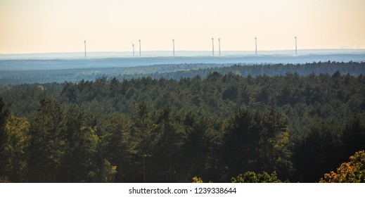 Tall wind turbine seen over vast forest