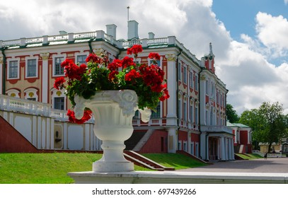 Tallin, Estonia - August, 2017: Blooming geranium in a white plaster pot. Kadriorg Palace in Tallinn in the background. A sunny summer day.