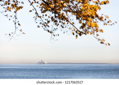 Tallinn Bay, Estonia - October, 2018. Tallink's fast passenger ferry Megastar on Baltic Sea on beautiful sunny autumn day, branches with yellow leaves above.