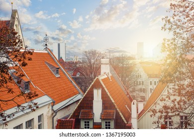 Tallinn, Estonia. Cityscape skyline with red roofs in old town of touristic city Tallinn