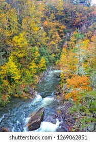 Tallulah River Gorge with Fall Colors